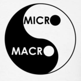 Macrogame microgame